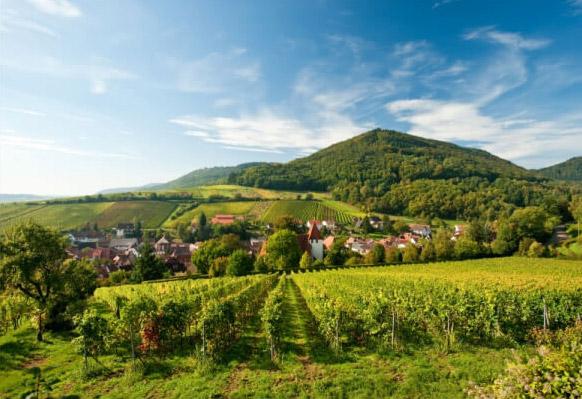 Die Südpfalz - eine traumhafte Region